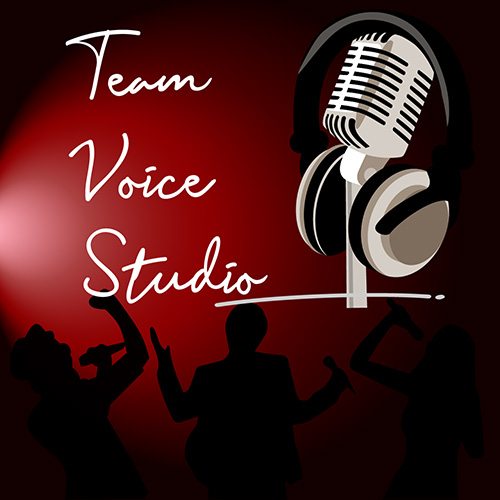 Team Building logo Team Voice Studio